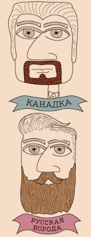 Beard types, from http://www.aif.ru/dontknows/infographics/1236527