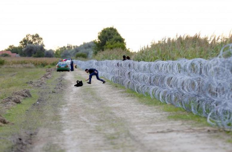 The 2015 Hungarian fence on the border with Croatia and Serbia. Fences, apparently, make the best neighbors