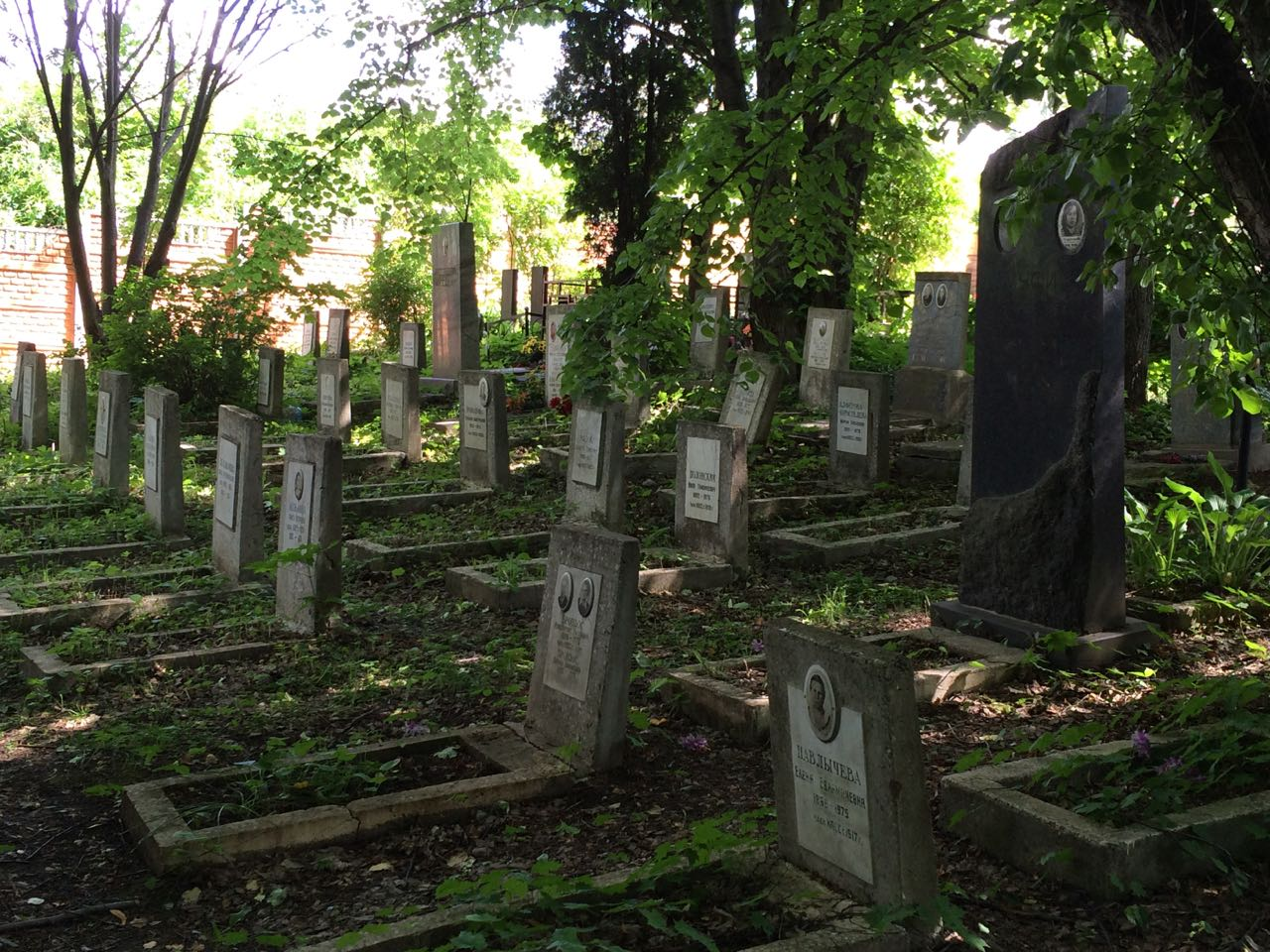 Old Bolshevik graves, Peredelkino cemetery, June 2014